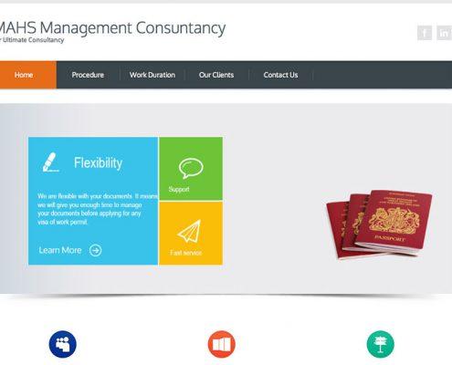 ithornet_mahs_management_consultancy_v1_feature